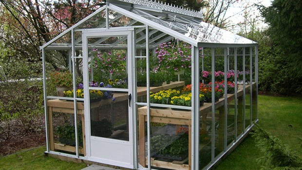 Greenhouse gab let s get growing for Home garden greenhouse design